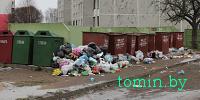Дворы Барановичей в праздники «заросли» мусором - фото