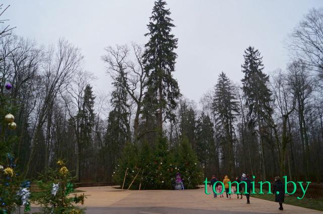 Поместье Белорусского Деда Мороза в Беловежской пуще. Главная ёлка. Фото Тамары ТИБОРОВСКОЙ.