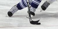 В Пинске будет профессиональный хоккейный клуб