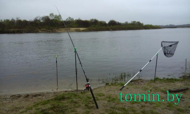 «Рыбная» точка на Соже у деревни Новоселки Ветковского района - фото