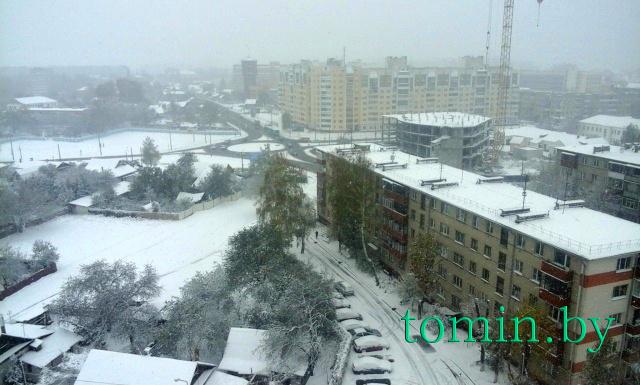 В Гомеле 26 октября 2016 года выпал первый снег - фото