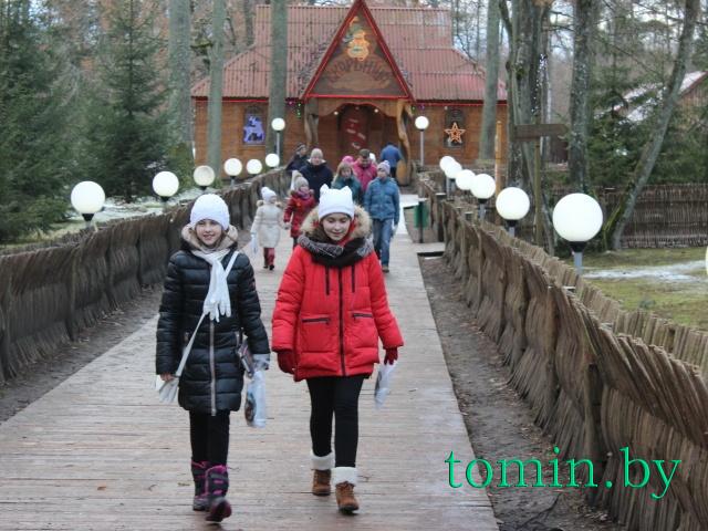 Поместье Белорусского Деда Мороза в Беловежской пуще - фото