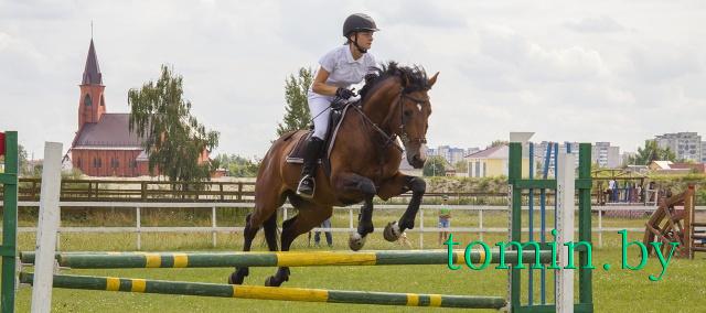 Конный спорт в Бресте - фото
