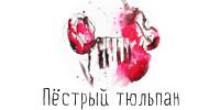 Финальная точка фестиваля «Пестрый тюльпан»: романтика и философия жизни от питерского  Ballet.Theatre
